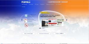 Flexible Web Sitesi